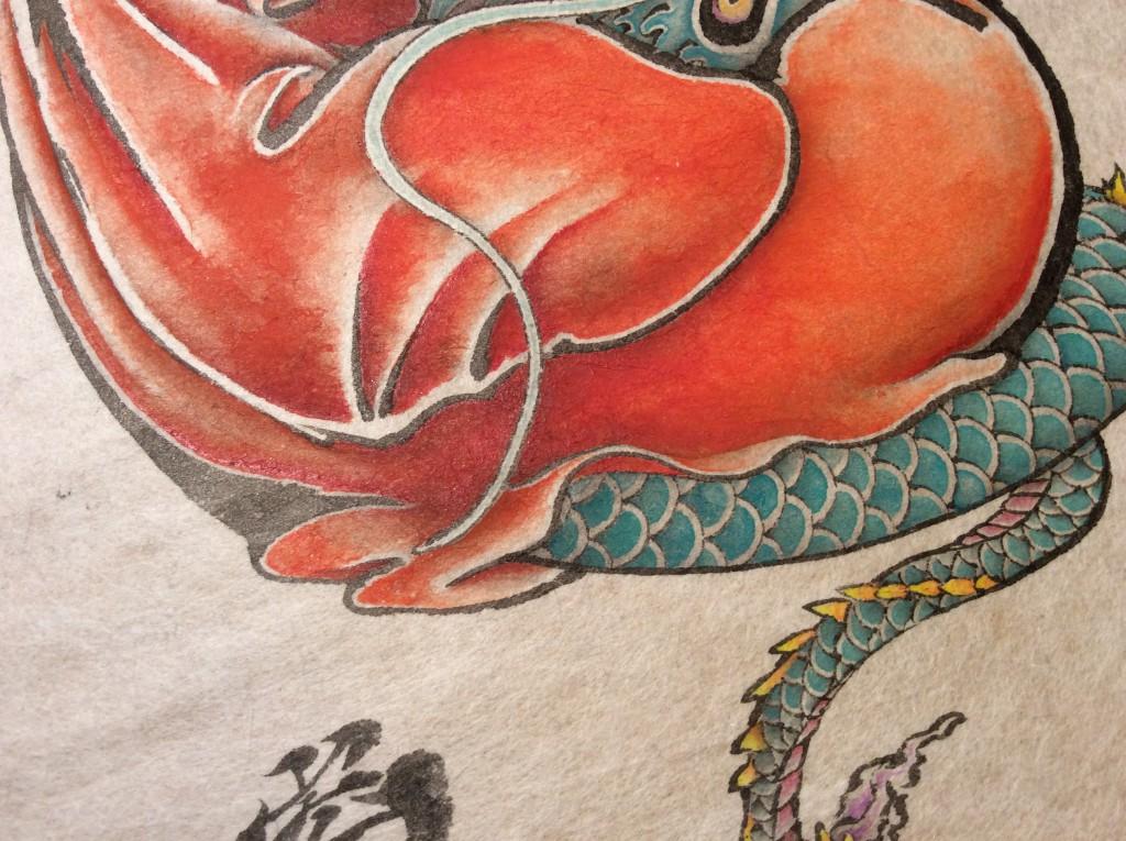 達磨龍の体アップ画像